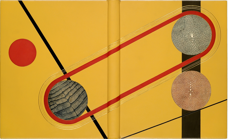 Een boekband van Domela